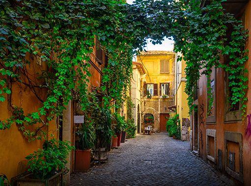 Vicolo con edera sui palazzi a Trastevere